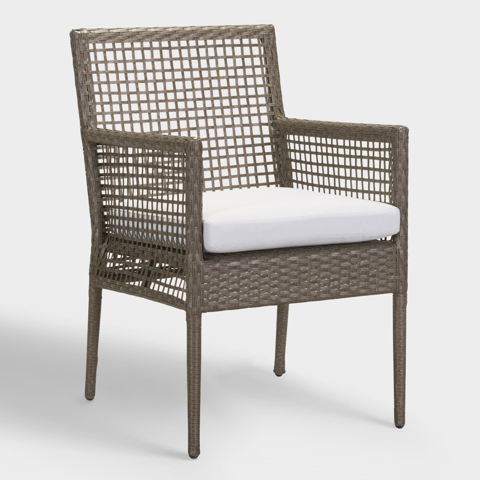 All Weather Wicker Erich Outdoor Patio Dining Chairs Set of 2: Gray by World Market